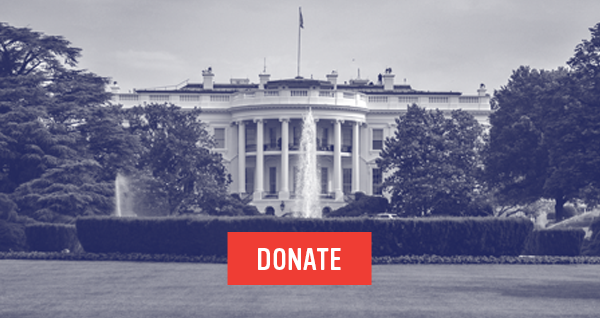 Donate now to send a Gun Sense President to the White House.