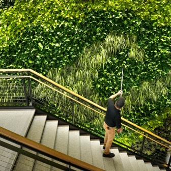 View from above of a man on outdoor stairway watering plants
