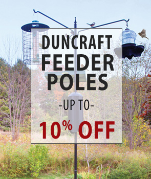 up to 10% Off Duncraft Feeder Poles!