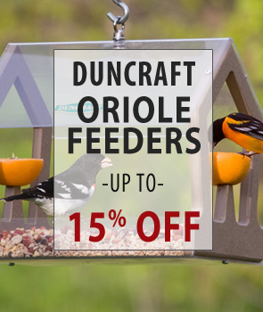 up to 15% Off Duncraft Brand Oriole Feeders!