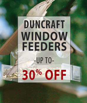 Up to 30% Off Duncraft Brand Window Feeders!