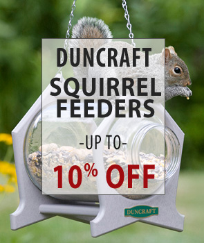 up to 10% Off Duncraft Brand Squirrel Feeders!