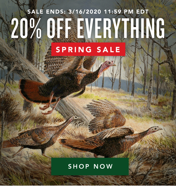 20% OFF Everything - Spring Sale