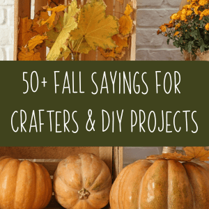 50+ Fall Sayings for Crafters - Silhouette and Cricut - Portrait, Cameo, Explore, Maker, Joy - by cuttingforbusiness.com.