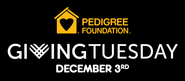 Pedigree Foundation | Giving Tuesday, December 3rd
