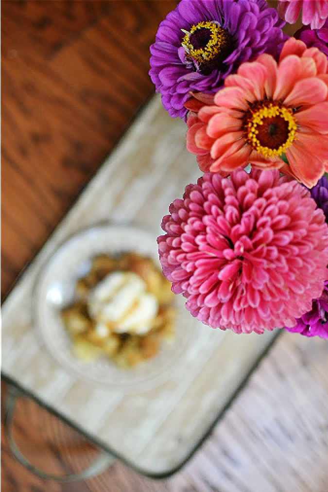 Zinnias with apple bread pudding