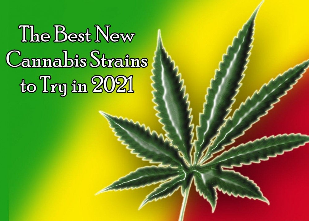 best new weed strains for 2021