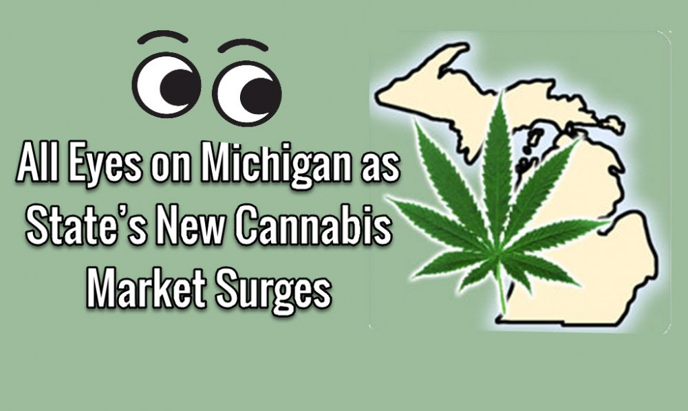 michigan cannabis market