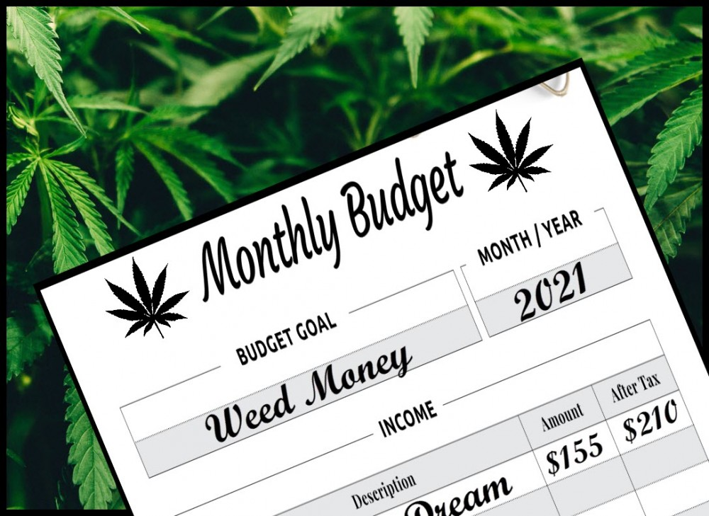 HOW MUCH DO YOU SPEND A MONTH ON WEED