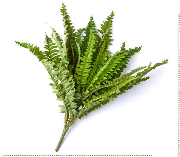 Artificial Boston Fern Bush