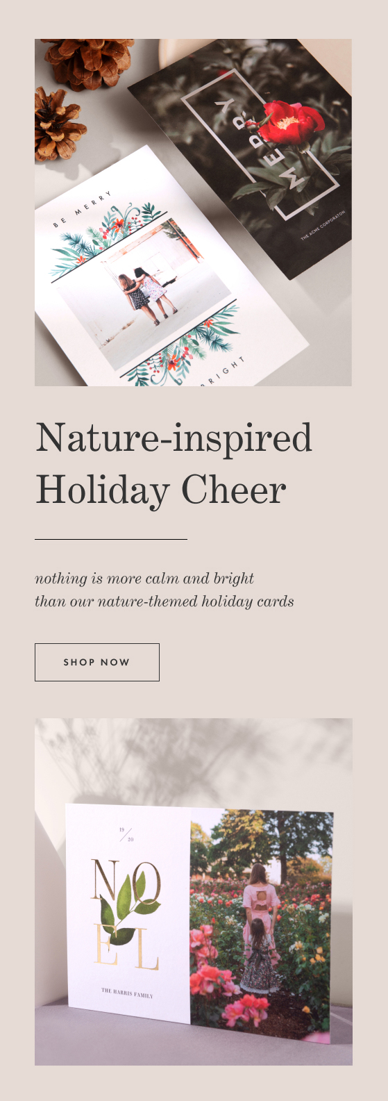 Nature Themed Holiday Cards