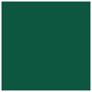 Since 1976
