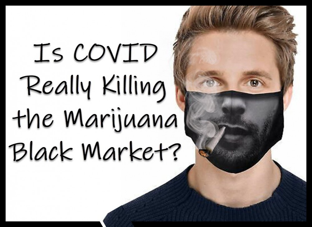 is covid killing the marijuana black market