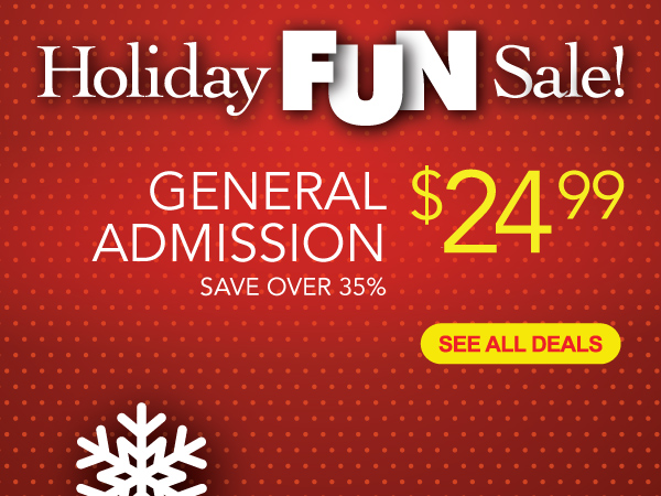 Holiday Fun Sale!