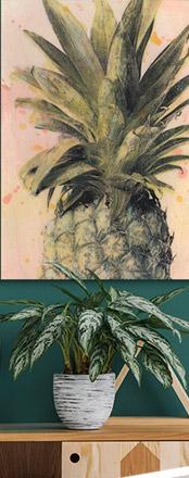 O'Ahu Pineapples, Surf and Woodie Wagon