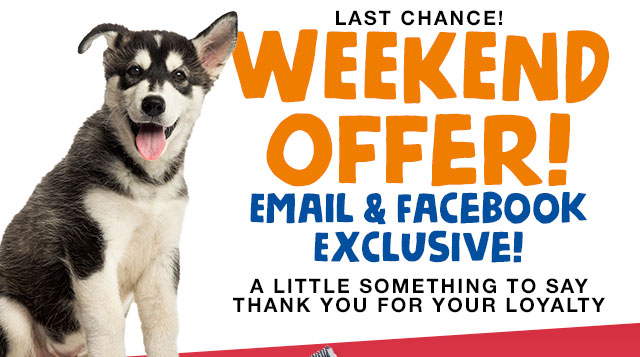 Exclusive Weekend Offer