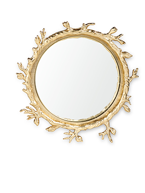 Ganymede Mirror