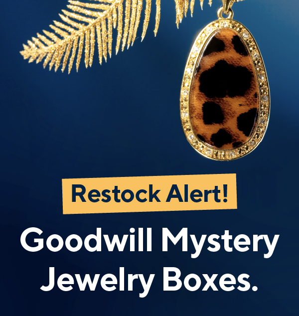 RESTOCKED: Goodwill Mystery Jewelry Boxes