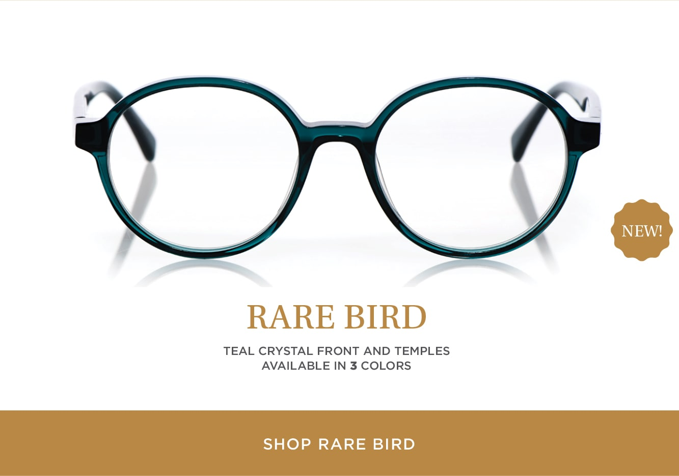 Shop Rare Bird