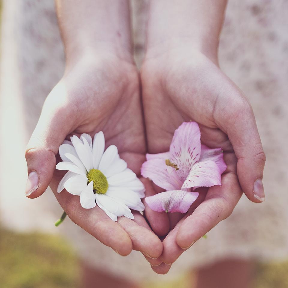Donate metaphor hands holding flowers