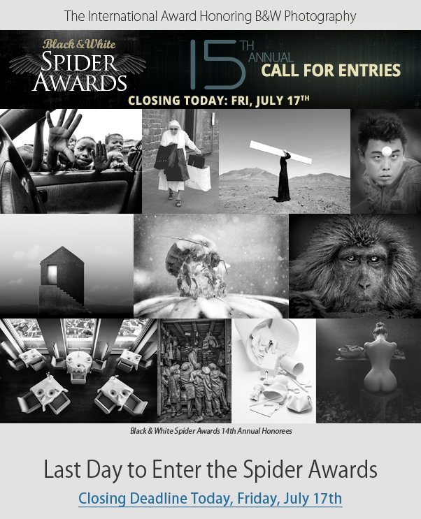 Last chance to enter 15th Spider Awards - Call for Entries Closing July 17th