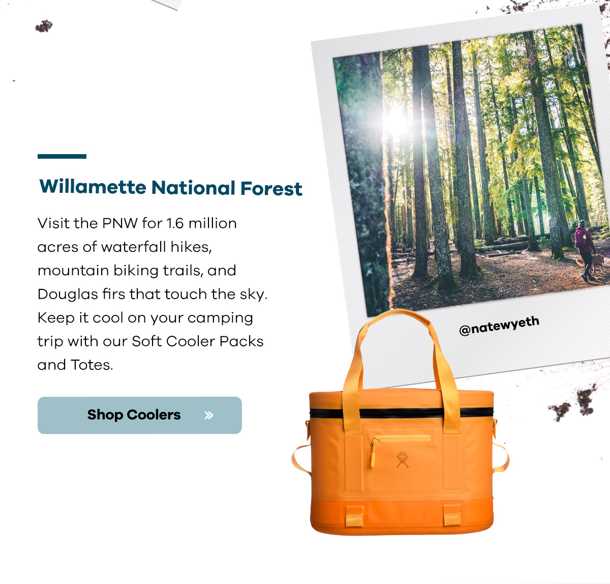 Wilamette National Forest | Visit the PNW for 1.6 million acres of waterfall hikes, mountain biking trails, and Douglas firs that touch the sky. Keep it cool on your camping trip with our Soft Cooler Packs and Totes | Shop Coolers >>