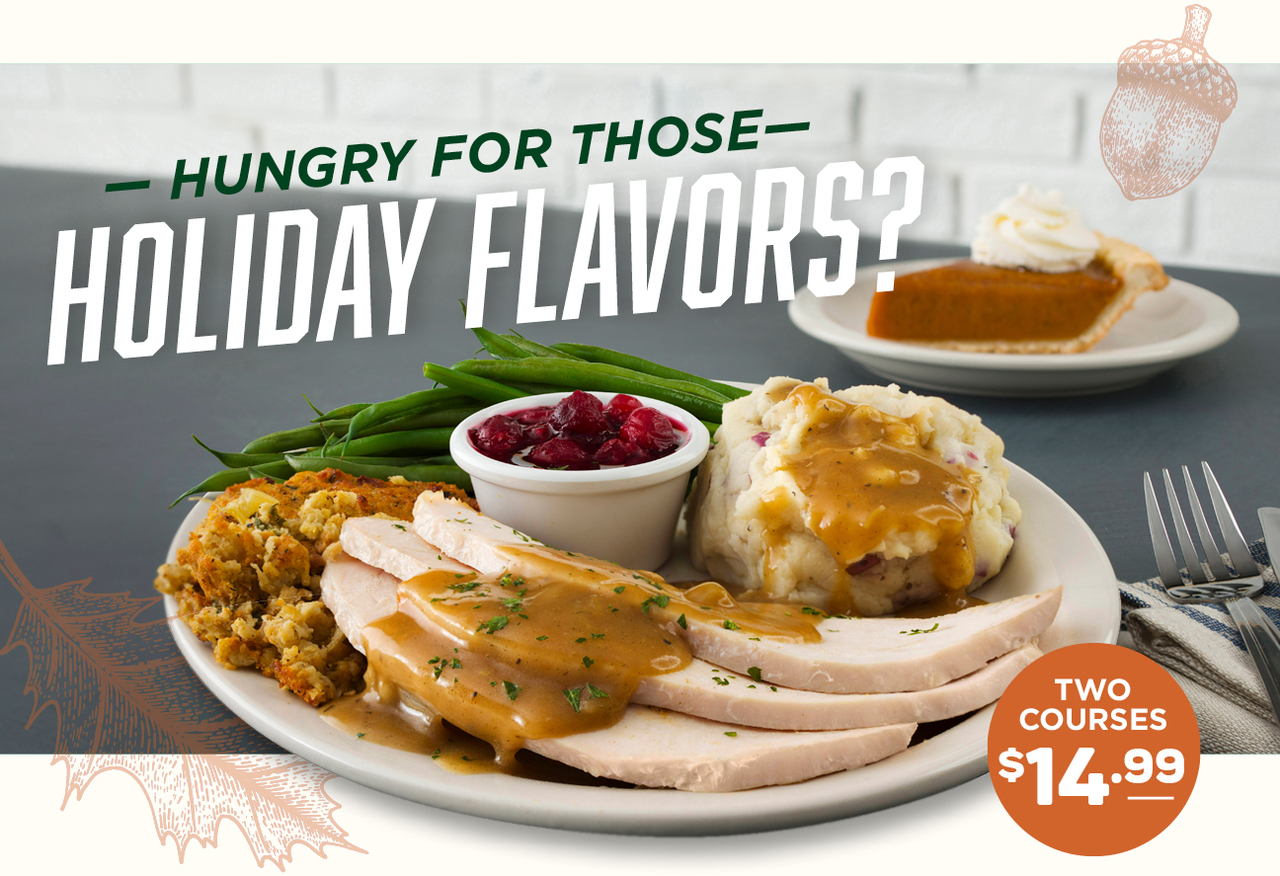 Metro Diner Holiday Limited Time Offer Turkey Plate