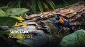 Adobe Releases Substance Alchemist Update