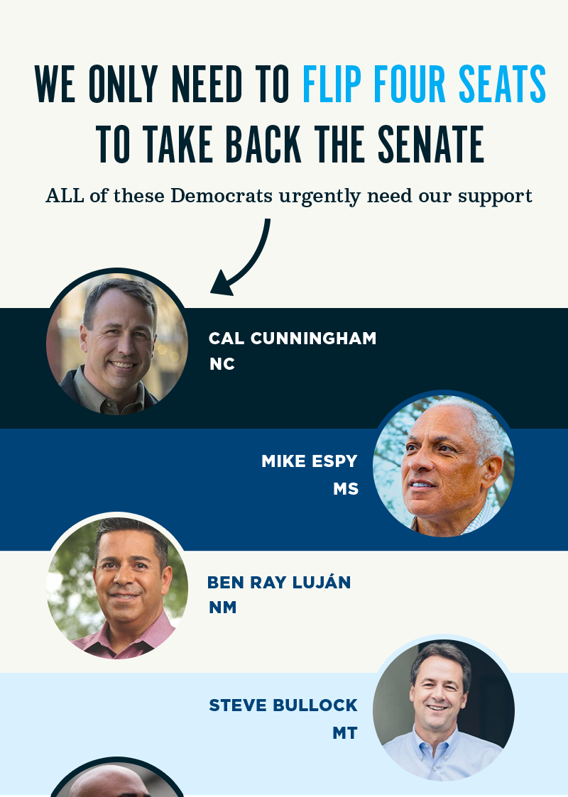 We only need to flip four seats to take back the Senate. All of these Democrats urgently need our support: