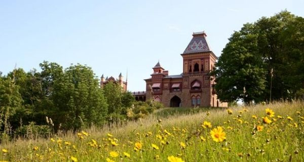 Olana State Historic Site, with field of yellow flowers in foreground