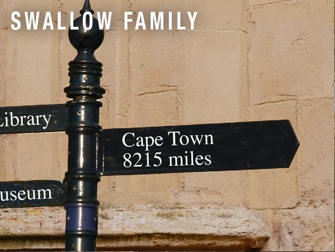 Swallow Family