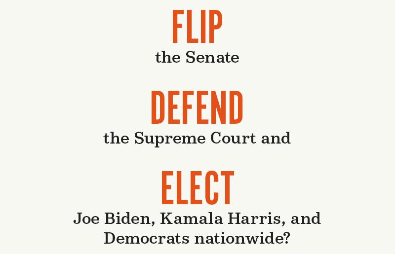 Flip the Senate, defend the Supreme Court, and elect Joe Biden, Kamala Harris, and Democrats nationwide?