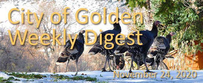 Weekly Digest November 24 2020