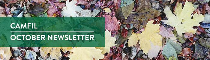 October newsletter banner