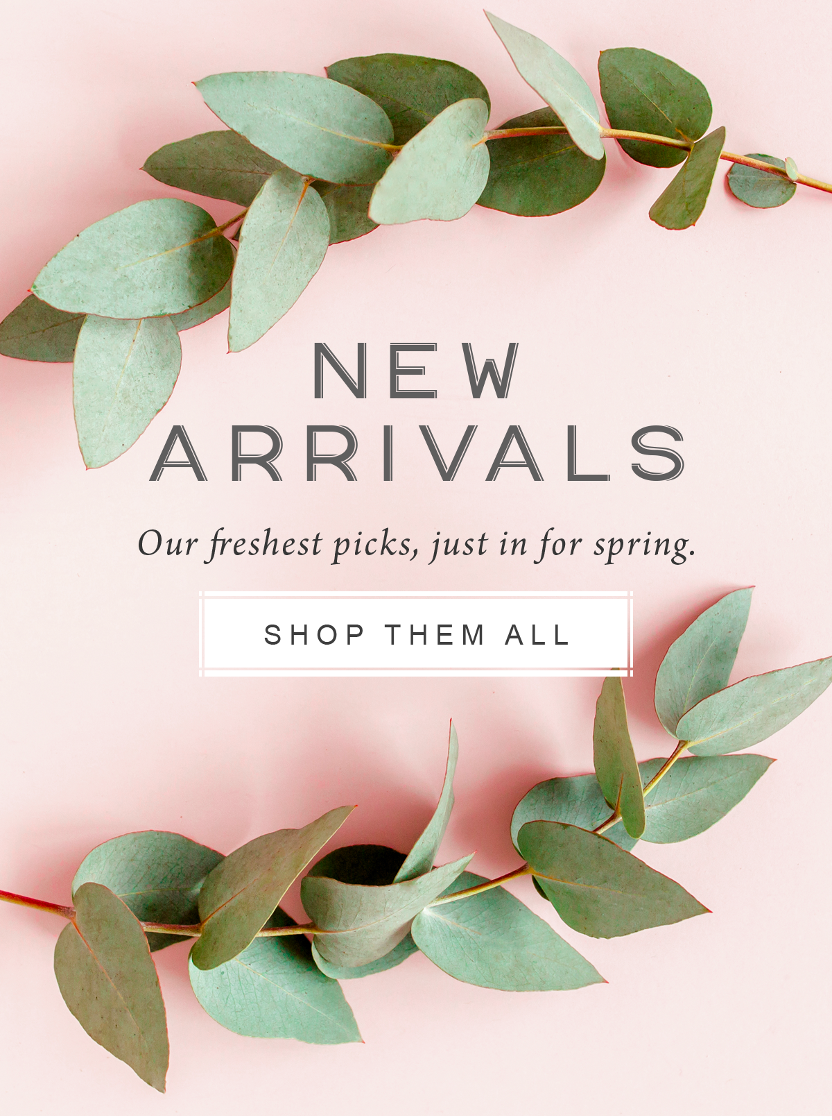 New Arrivals Our freshest picks, just in for spring.  Shop Them All