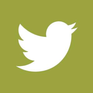 twitter_green.jpg