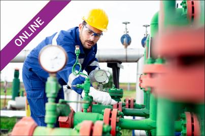 Gas Transmission Regulator Station Design