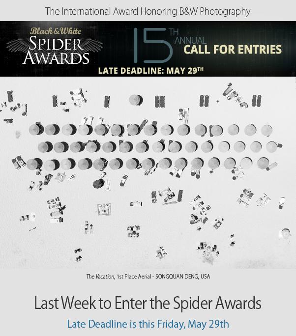 Last Week to Enter Spider Awards