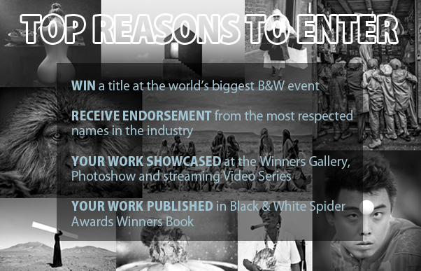 Top Reasons to Enter