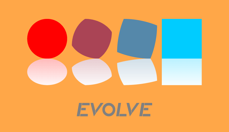 A picture of the concept of evolution