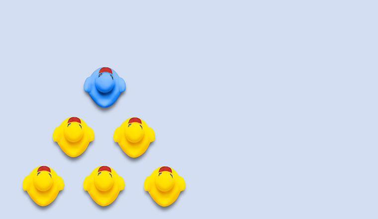 A pictire of the leadership concept with ducks