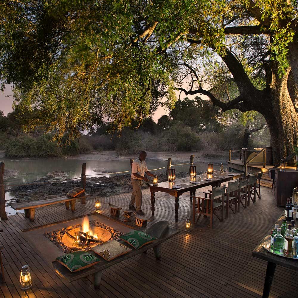 The Ultimate Armchair Safari