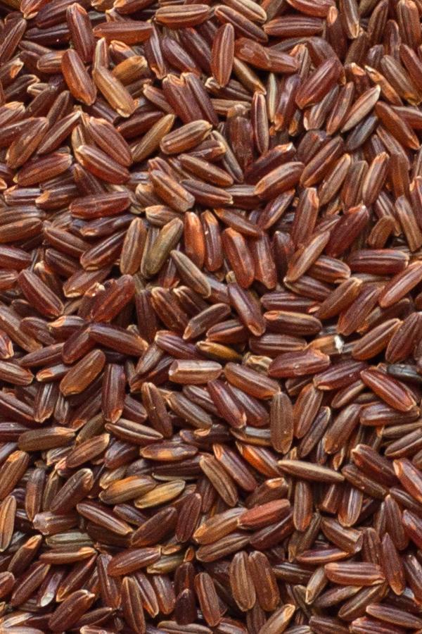 Wild Red Rice