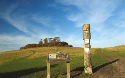 Hidden Gem - family-friendly walking in the North Wessex Downs AONB