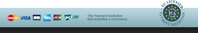 Payment insitution that simplifies e-commerce