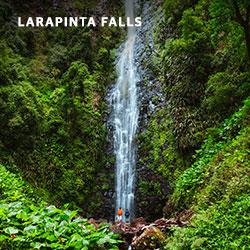 Larapinta Falls, Lamington National Park