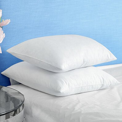 White Feather Pillows for Sleeping, Square Bed Pillows 12 x 12 inch, 18 x 18 inch, 20 x 20 inch, 26 x 26 inch, Set of 2