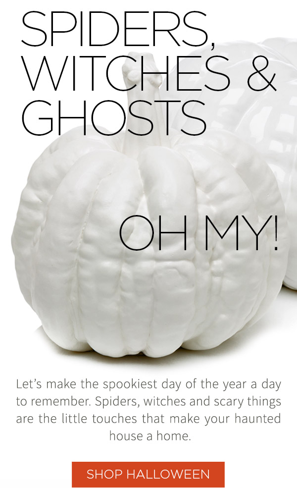 Spiders, Witches & ghosts... oh my! Let's make the spookiest day of the year a day to remember. Spiders, witches and scary things are the little touches that make your haunted house a home.