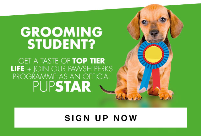 Student Sign-Up