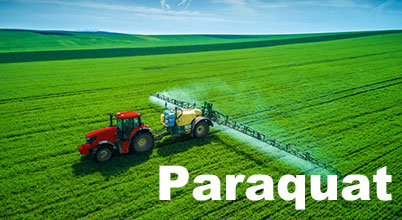Is banning paraquat in Brazil a foregone conclusion?